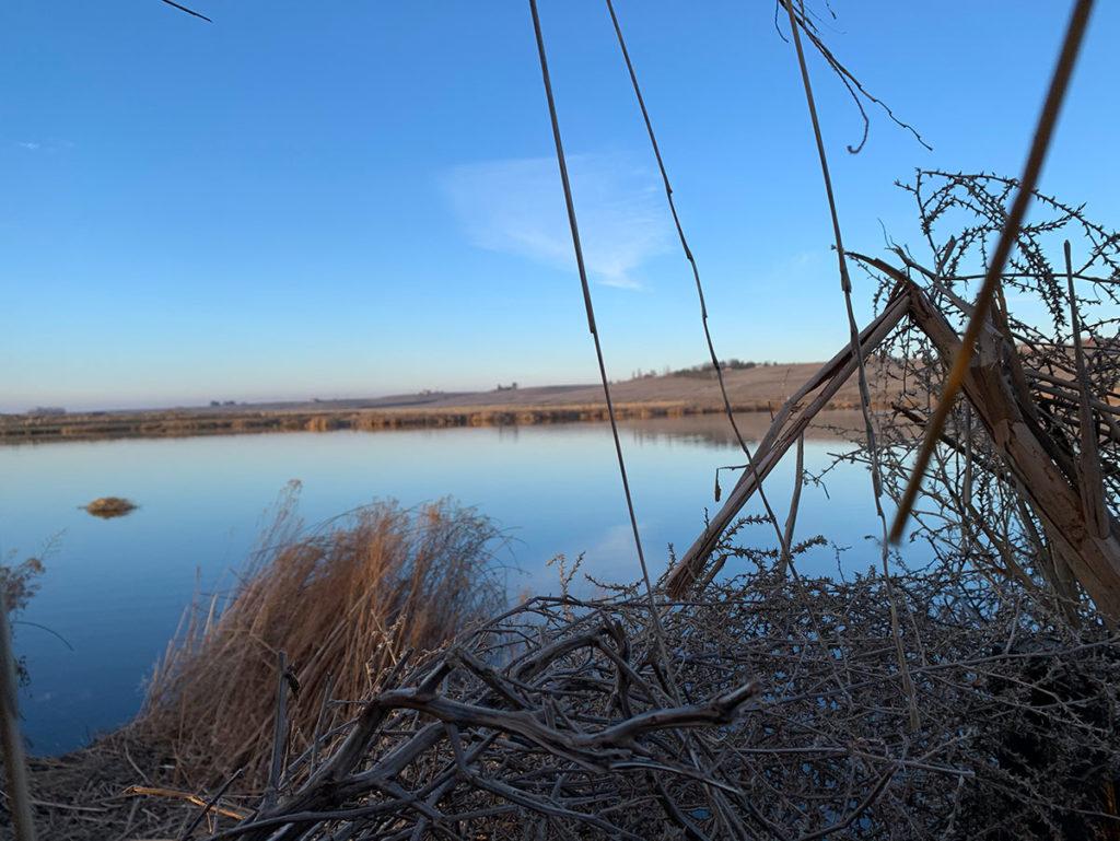 Clear Skies Calm Water